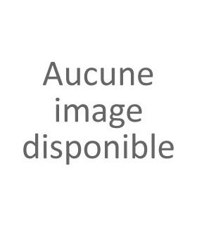 Boite Noël n°2 - 4 Calissons